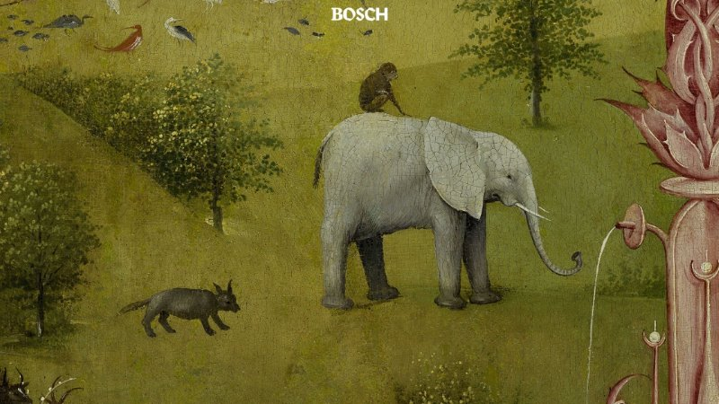 boch-1